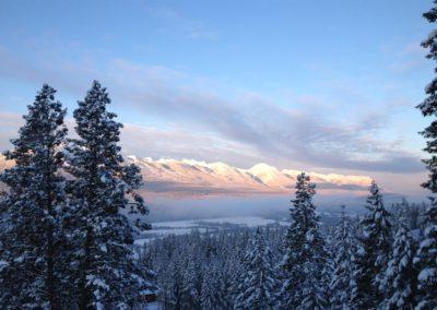 recent snow shots December 12 015