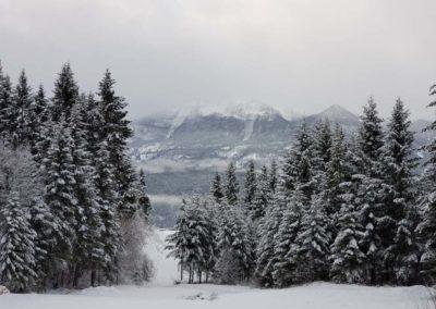 Sun Suite view winter